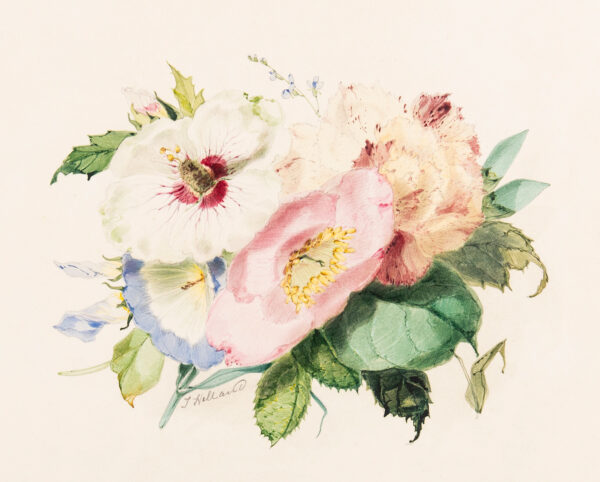 HOLLAND James R.W.S. (1799-1870) - A posy of flowers.