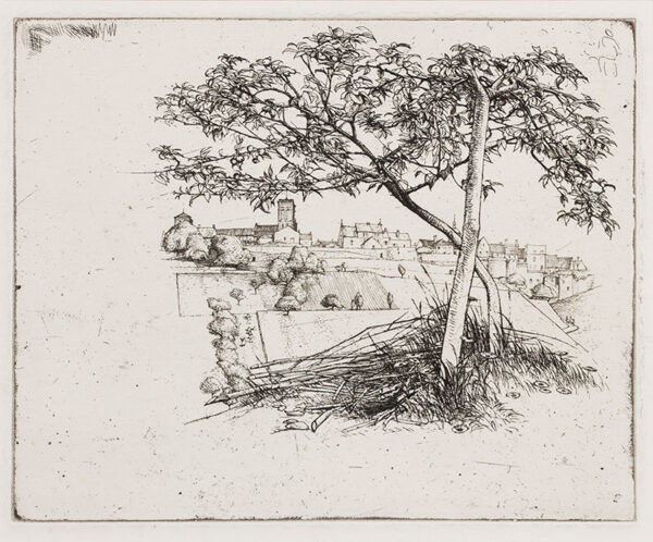LACK Henry Martyn R.E. (1909-1979) - View through tree.