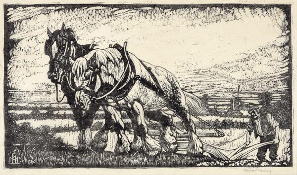 MACKEY Haydn Reynolds (1883-1979) - The Plough Team.