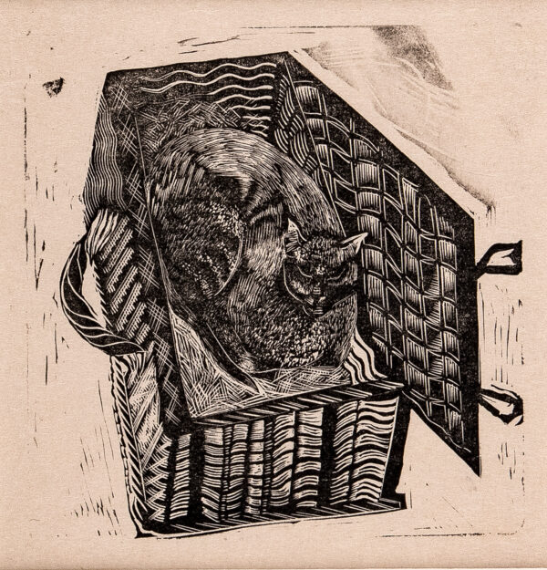 MARX Enid R.D.I (1902-1998) - 'Leonard Woolf's cat in a basket'.