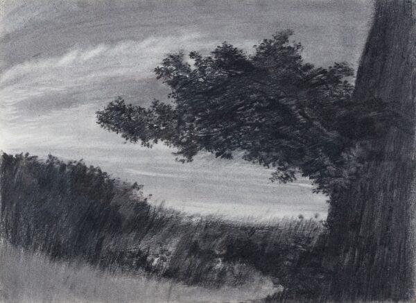 MIDDLEDITCH Edward (1923-1987) - 'Landscape Study No.
