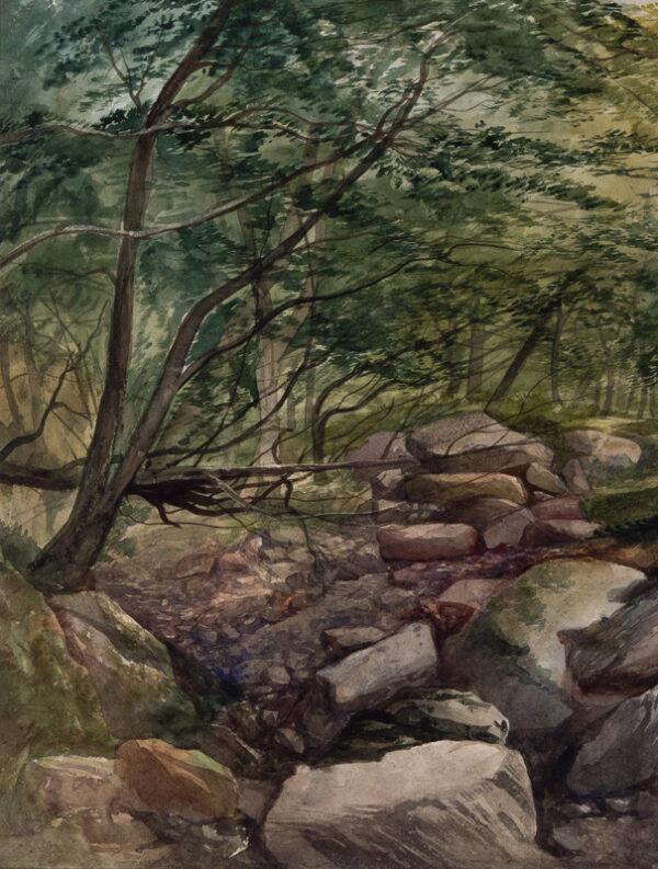 MIDDLETON John (1827-1856) - A river bed, possibly near Ivybridge, Devon.