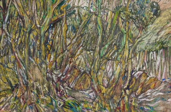 MOIRA Gerald P.R.I. (1867-1959) - 'Devon woodland'.