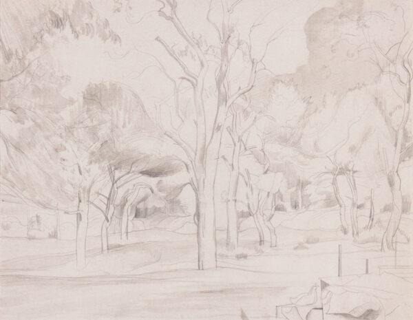 NASH John R.A. (1893-1977) - Woodland study.