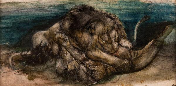 NETTLESHIP John Trivett (1841-1902) - A Lion Fight.