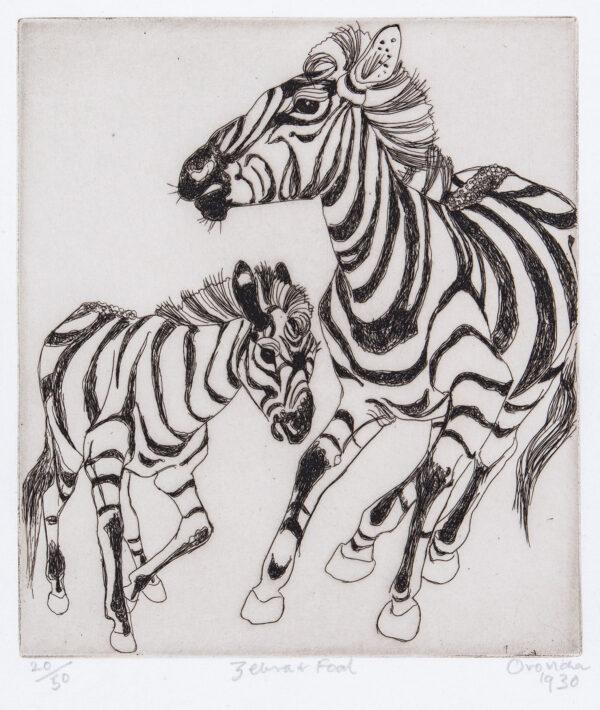 PISSARRO Orovida (1893-1968) - 'Zebra and Foal'.