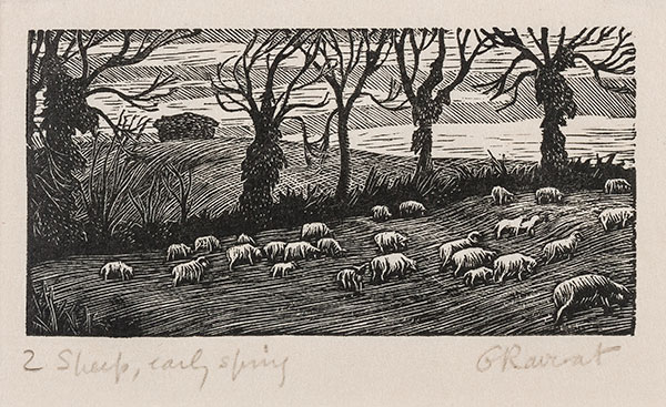 RAVERAT Gwen S.W.E. (1885-1957) - 'Sheep, Early Spring' (SN287).