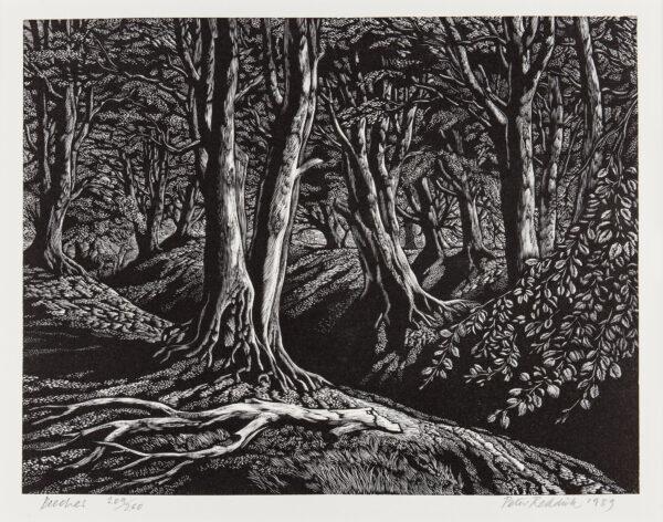 REDDICK Peter S.W.E. (1924-2010) - 'Beeches'.