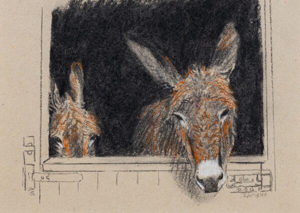 SAPIEHA Christine (Mid 20th Century) - 'Donkeys: Bramble and Thistle'.