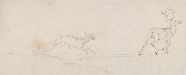 SEYMOUR James (1702-1752) - Stag and Doe.