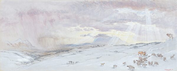 SHACKLETON William (1872-1933) - Snow on the Fells.