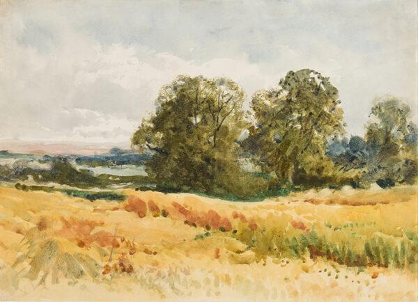 STANNARD Henry John Sylvester (1870-1951) - Harvest field.