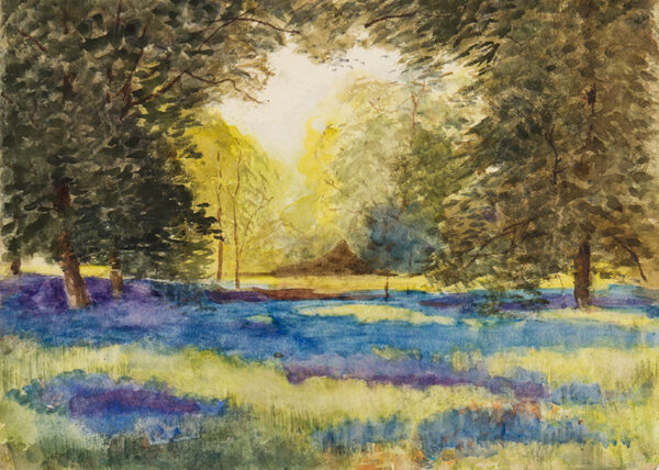 STANNARD Henry John Sylvester (1870-1951) - A bluebell wood.