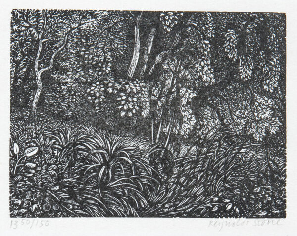 STONE Reynolds S.W.E. (1909-1979) - The Old Rectory garden, Litton Cheney.