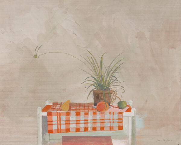TAYLOR Jane R.W.S. (b.1925) - 'Still life with Spider Plant'.