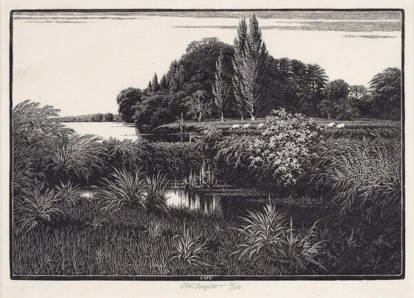 TAYLOR Charles William (1878-1960) - 'Thames'.