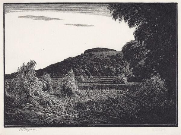 TAYLOR Charles William (1878-1960) - Harvest Field.