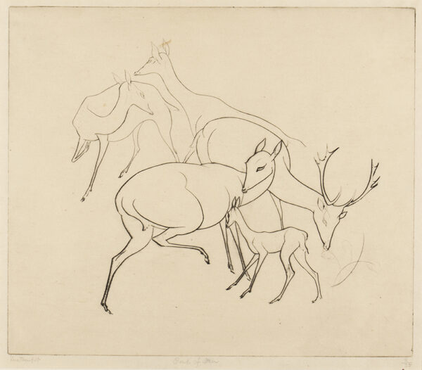 TEMPLE Vere Lucy (1898-1981) - 'Group of Deer'.