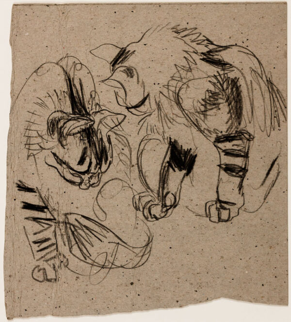 TEMPLE Vere Lucy (1898-1981) - Eighteen drawings of cats.