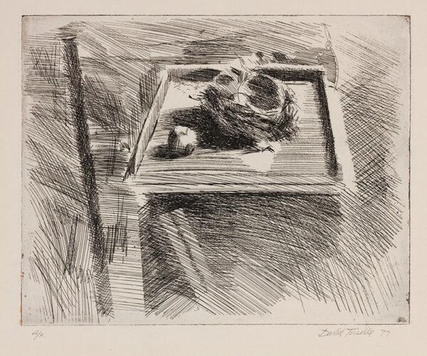 TINDLE David R.A. (b.1932) - Apple and Nest.