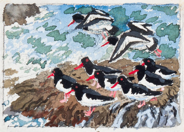 TUNNICLIFFE Charles Frederick O.B.E. R.A. R.E. (1901-1979) - Oyster Catchers.