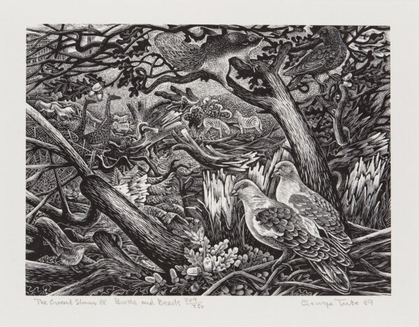 TUTE George R.E. S.W.E b.1933 - 'The Great Storm 88, Birds and Beasts' (sic) Wood engraving.