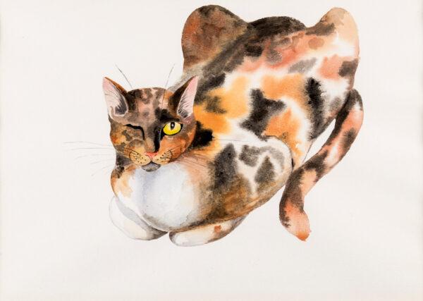 WARBURTON Joan (1920-1996) - 'Cedric Morris's One Eyed Cat, Mrs Peace'.