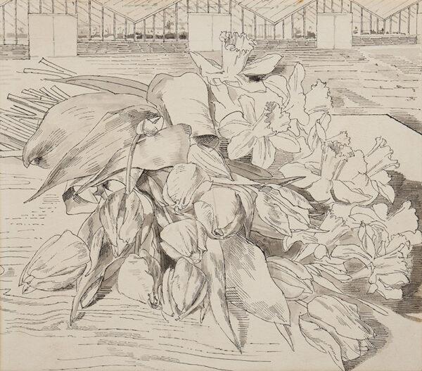 WARD John Stanton C.B.E. (1917-2007) - Tulips and daffodils.
