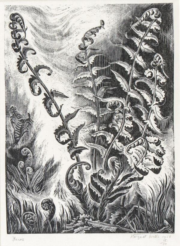 WELLS Margaret Bruce (1909-1998) - 'Ferns'.