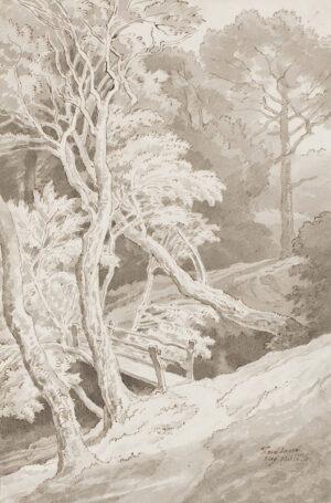 ABBOTT John White (1763-1851) - 'Fordland', Devon.