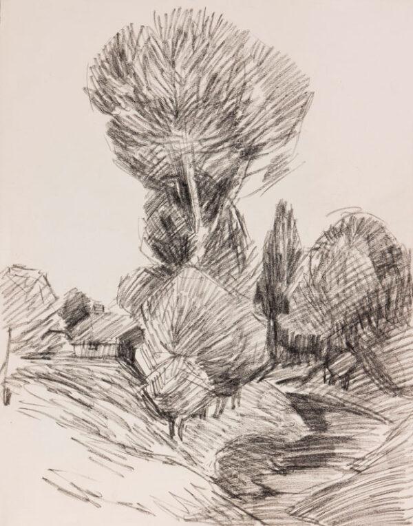 BEVAN Robert (1865-1925) - Study of trees; Poland.