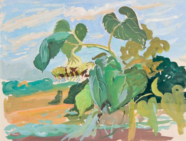 BRAY Phyllis (1911-1991) - The sunflower.
