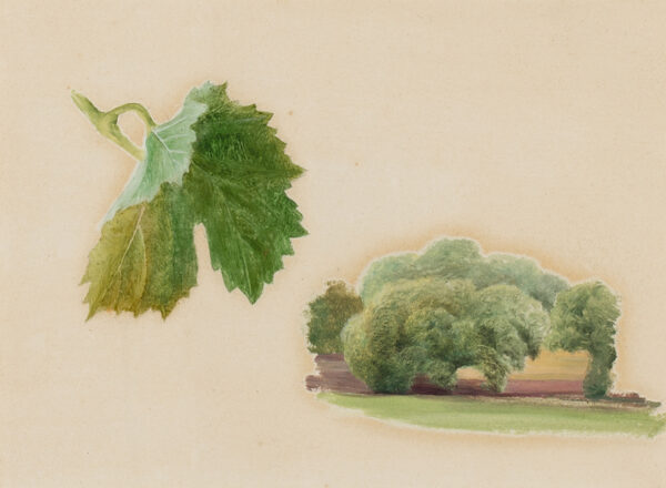 BRETT John A.R.A. (1831-1902) - Studies of a grape-vine and trees, possibly for 'Val d'Aosta' (1858).