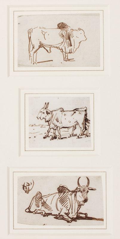 CHINNERY George (1774-1852) - Three studies of Brahmin cattle.