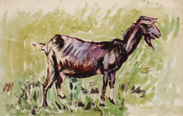 CLARKE HALL Edna (1879-1979) - The Goat that went to Cornwall on the train.