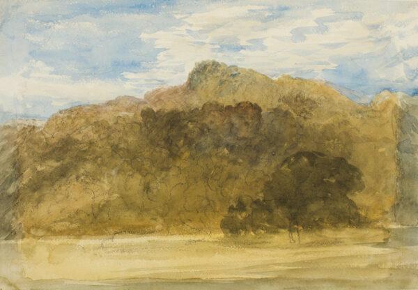 COX David O.W.S. (1783-1859) - Wooded hillside.