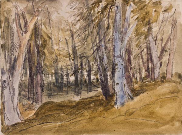 COX David O.W.S. (1783-1859) - Trees on Box Hill.