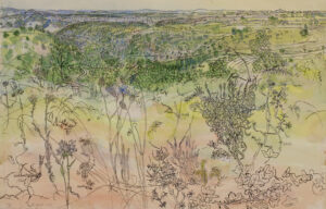 GROSS Anthony R.A. (1905-1984) - 'Rocher de (?Las Roquas) avec cupidonnes (thistles) et autres fleurs d'ete'.