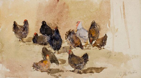 HASTIE Grace (1839-1926) - Study of hens.
