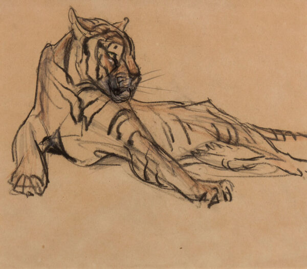 HENDERSON Elsie (1880-1967) - Recumbent tiger.
