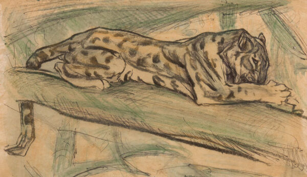HENDERSON Elsie (1880-1967) - Resting leopard.
