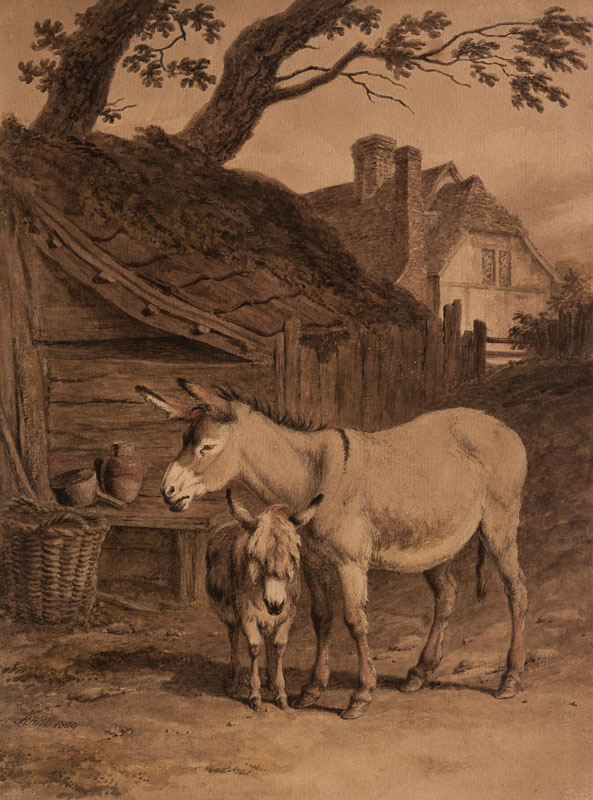 HILLS Robert O.W.S. (1769-1844) - Donkey and foal.