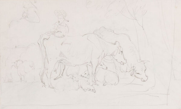 LANDSEER Sir Edwin R.A. (1802-1873) - Recto: studies of cattle and sheep.