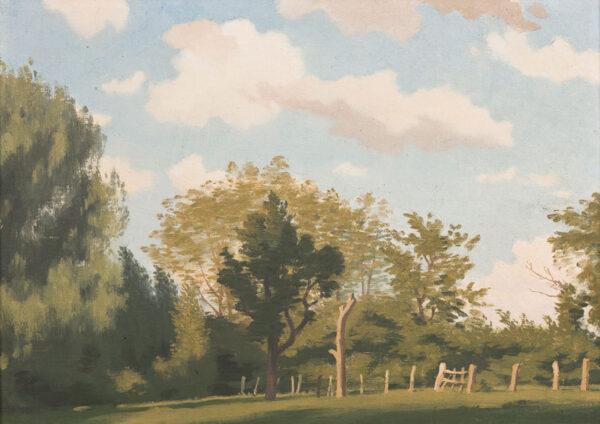 MACLAGAN Philip (1901-1972) - 'A Meadle Wood'.
