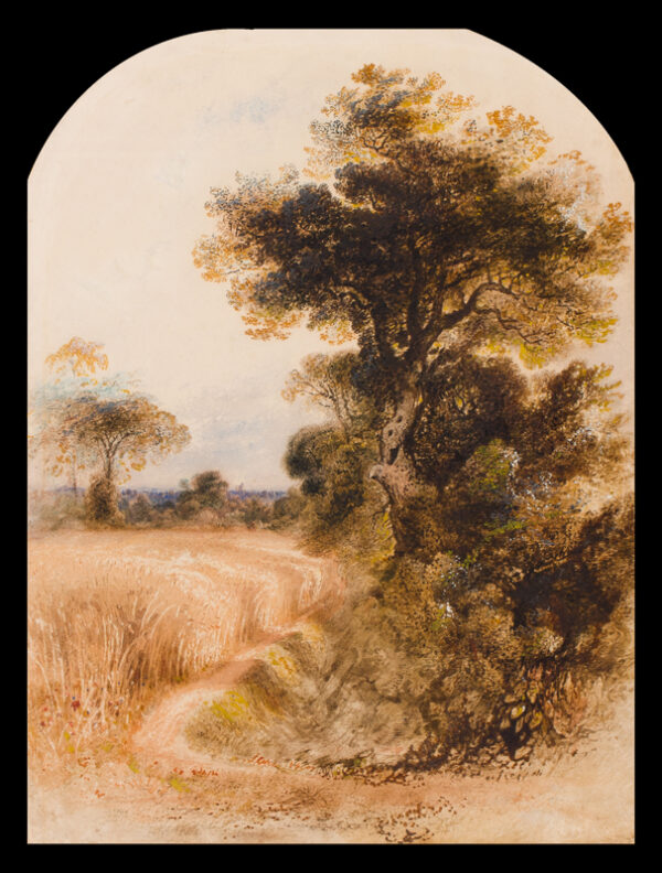 MARTIN John (1789-1854) - Path between cornfield and wood.