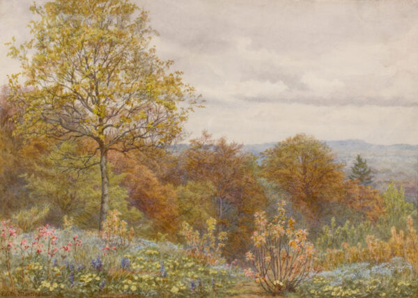 MARTINEAU Edith (1842-1909) - 'A copse on the slopes of Blackdown', Dorset.