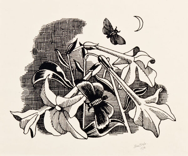 NASH John R.A. (1893-1977) - Tobacco flowers and Moon.