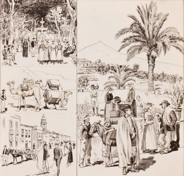 TENERIFE subject. Anon. Circa 1895. - 'Tenerife'; pen and ink illustrations, possibly for 'The Graphic' magazine.