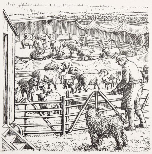 TUNNICLIFFE Charles Frederick O.B.E. R.A. R.E. (1901-1979) - The Sheep Market 4.