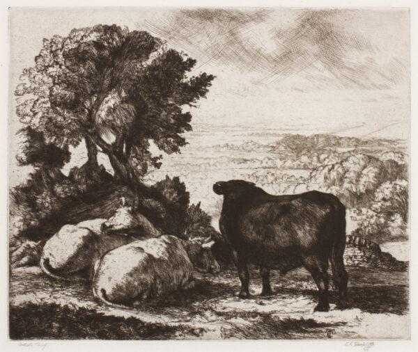 TUNNICLIFFE Charles Frederick O.B.E. R.A. R.E. (1901-1979) - The Black Bull.
